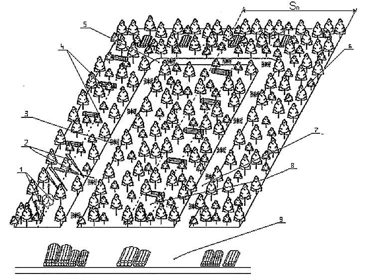 Рис. 4. Схема разработки ленты, удаленной от волока