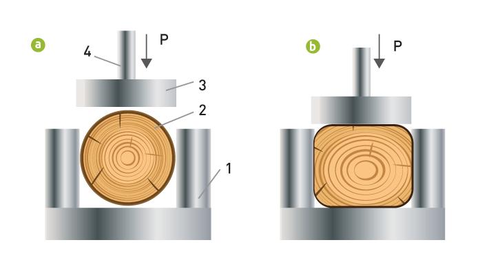 Рис. 1. Изменение сечения заготовки в ходе совмещенного процесса сушки, прессования и пропитки: а – в начале процесса, b – в конце процесса