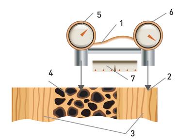 Рис. 5. Прибор для определения соотношения твердости здоровой зоны древесины заготовки и твердости фаутной зоны, Hз /Hф