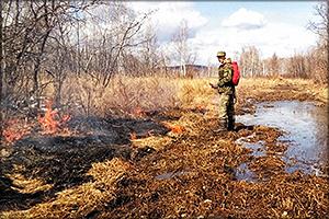 Первый в этом сезоне лесной пожар потушили на территории Уликанского лесничества