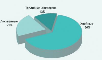 Рис. 2. Распределение производства необработанных лесоматериалов