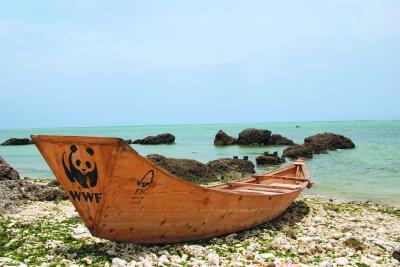 WWF Boat Sabani (Япония)