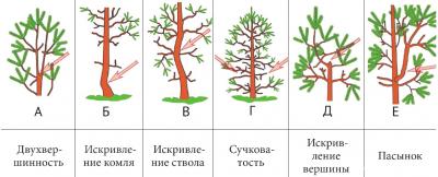 Рис. 3. Примеры нежелательных деревьев [8]