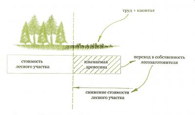 Рис. 1. Содержание эксплуатационной деятельности (заготовка древесины)
