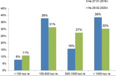Рис. 5. Распределение FSC-сертифицированных участков по размерам, % от общей площади