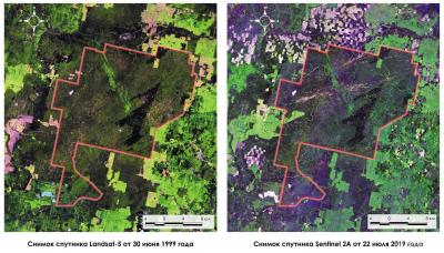Слева: снимок спутника Landsаt-5 от 30 июня 1999 года, справа: снимок спутника Sentinel 2А от 22 июля 2019 года