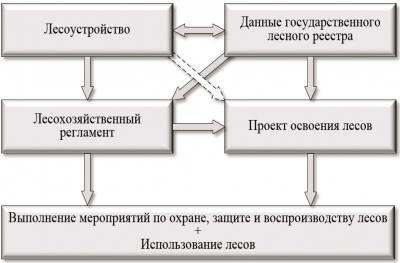 Схема реализации мероприятий по охране, защите, воспроизводству и использованию лесов согласно лесному законодательству РФ