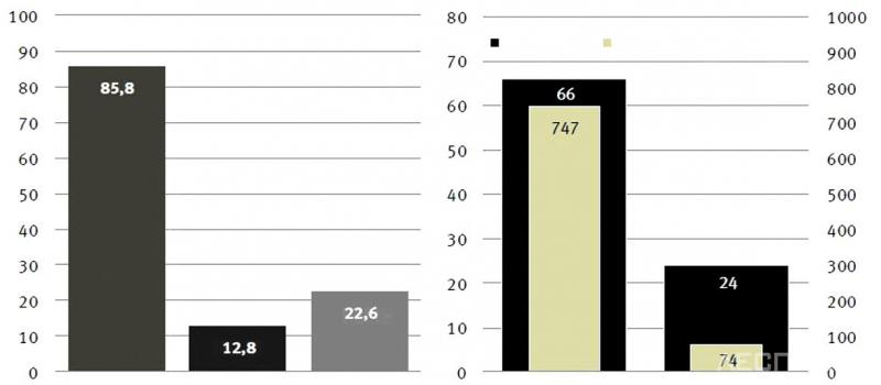 Рис. 2. Сжигание древесных отходов на ТЭС и ТЭЦ в Германии
