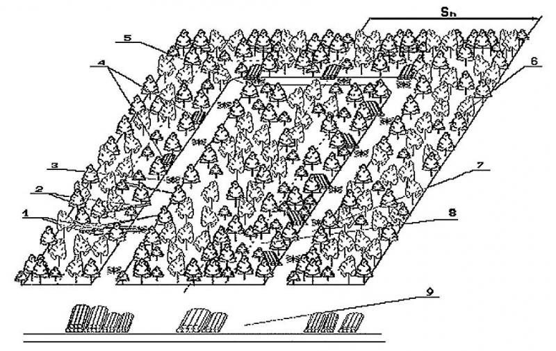 Рис. 3. Схема разработки ленты, примыкающей к волоку
