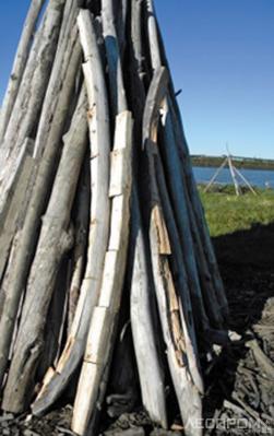 Рис. 2. Сложенная для просушки выловленная древесина