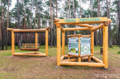 Обустройство экологической тропы «TERRA OECOLOGIA» (ИП Шистеров)