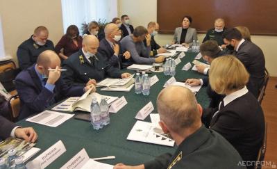 Выездное совещание по подведению итогов лесовосстановительных работ