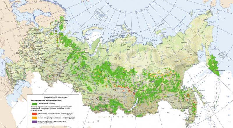 Малонарушенные лесные территории: состояние и утраты (2015 г.) Источник: WWF России