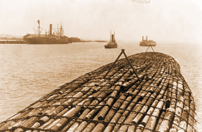 Морская сигара Бенсона