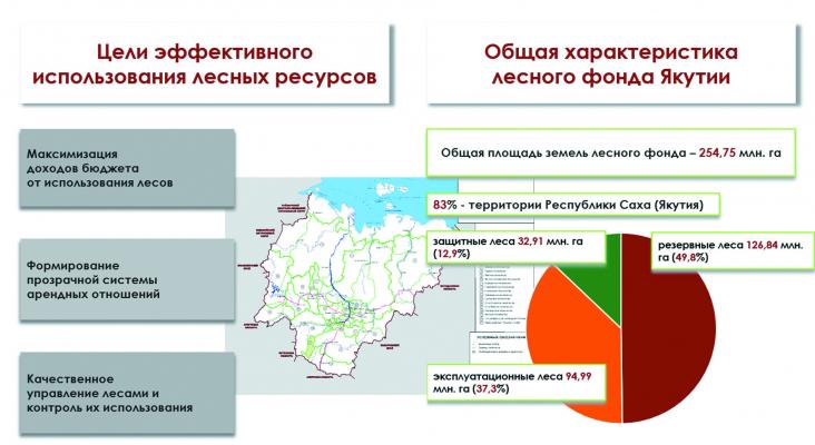 Лесной фонд Якутии (фрагмент презентации Алексея Агеева)