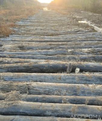 Рис. 1. Лежневая дорога
