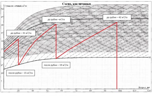 Рис. 3. Вариант программы рубок для сосняка (пилотный участок в Вологодской области, возраст насаждения 20 лет)