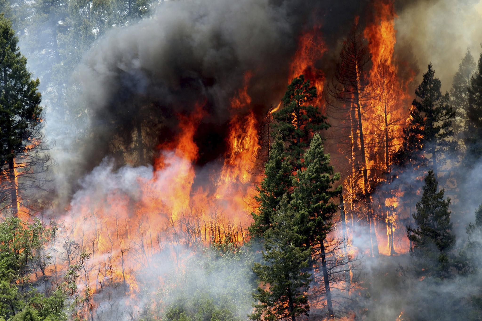 некоторое время картинки защита от пожара интересный необычайно роскошный