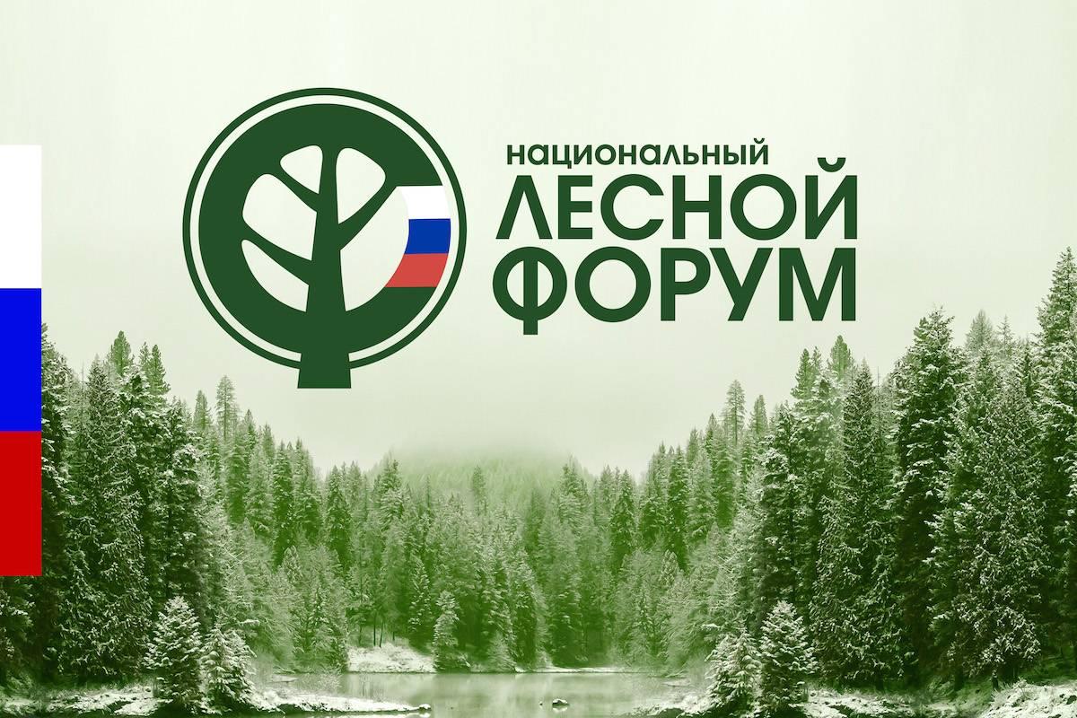 Национальный лесной форум в Сыктывкаре
