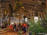 Лес в павильоне