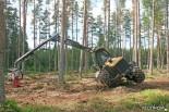 Харвестер Eco Log 560D. Демонстрация возможностей