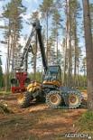 Демонстрация возможностей харвестера Eco Log 560D