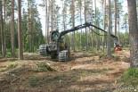 Развесовка харвестер Eco Log 560D