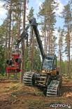 Харвестер Eco Log 560D демонстрирует свои возможности на сложном рельефе
