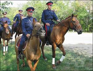 Совместное патрулирование лесов с участием Миллеровского конного взвода
