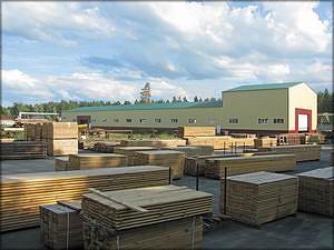 Бобровский лесокомбинат первым в регионе запустил цех по производству домов по шведско-финской технологии