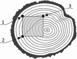 Рис. 3. Определение области поверхности торца бревна для формирования набора идентификационных данных