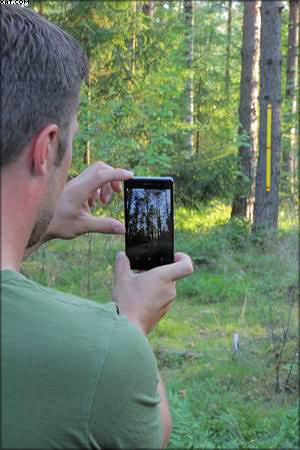 Измерение леса с помощью программы Trestima
