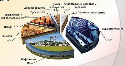 Структура объема продукции, отгруженной предприятиями обрабатывающих производств (2013 г.)