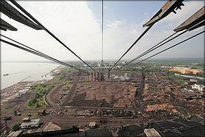 На комбинате еще 50 лет назад было установлено четыре радиальных крана, сейчас работают два. Высота каждого – 70 метров. На одном из них чуть выше кабины оператора поселилась парочка сапсанов