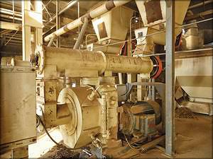 Пресс-гранулятор на одном из пеллетных заводов в Китае