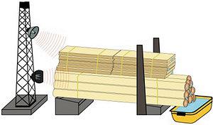 Рис. 3. Реализация метода на лесопильном участке