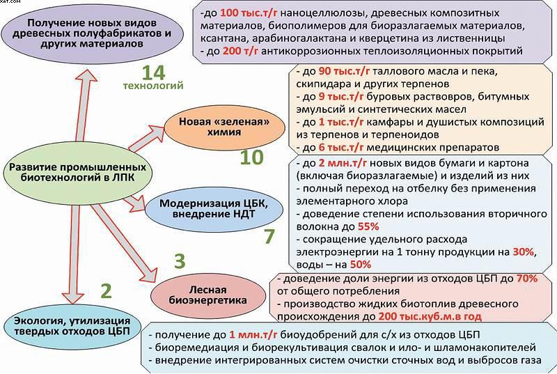 Рис. 7. Основные разделы, перспективные технологии и ожидаемые результаты реализации направления «Развитие промышленных биотехнологий в ЛПК России»