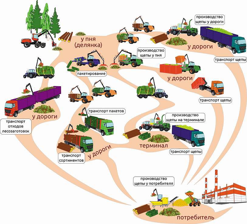 Рис. 5. Комплексная технология освоения древесной биомассы для биоэнергетики при сплошнолесосечной сортиментной технологии в Финляндии