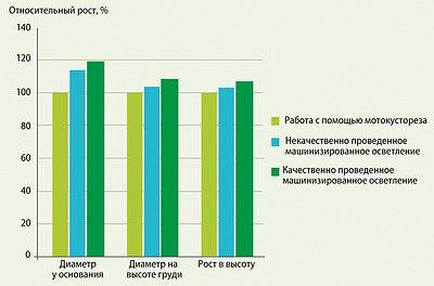 Рис. 6. Сравнительные показатели роста молодняка после проведения работ по машинизированному осветлению и работ с использованием мотокустореза