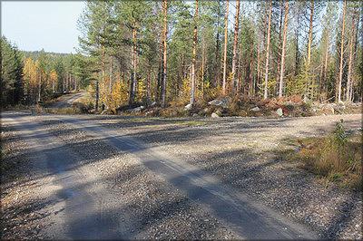 Рис. 19. Т-образное пересечение – наиболее приемлемая для лесной дороги форма перекрестка на ровном участке