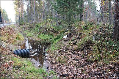 Рис. 21. Водопропускное сооружение лесной дороги