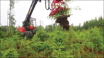 Рис. 4. При проведении машинизированного осветления деревья лиственных пород вырываются из почвы с корнями с помощью устройства Naarva P25 производства компании Pentin Paja Oy