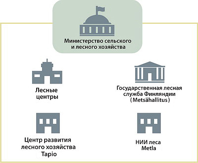 Рис. 1. Фрагмент системы управления лесами в Финляндии до 2015 года