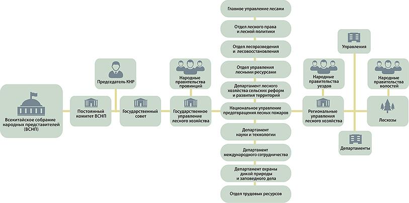 Рис. 5. Схема управления лесным хозяйством в Китае