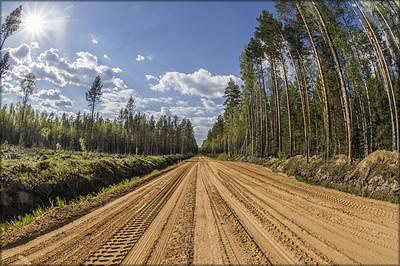Лесная дорога «Монди СЛПК»