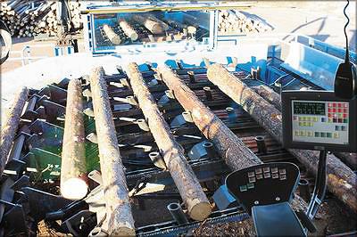 Рис. 11. Вид из кабины оператора на участке оценки бревен на лесопильном заводе компании Siljan, Швеция