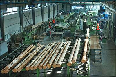 Деревообрабатывающий цех в Сямже