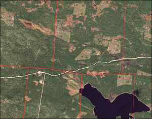 Рис. 3. Снимок лесного участка в натуральном цвете для нанесения на карту дорог (квартальные границы выделены красным)