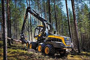 Число импортной техники на делянках российских лесов в последние годы растет быстрыми темпами