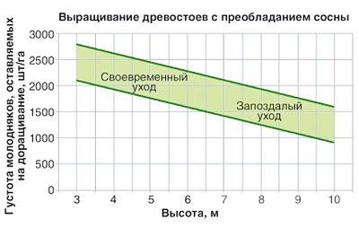 Рис. 1. Пример нормирования по густоте для назначения рубок ухода в молодняках